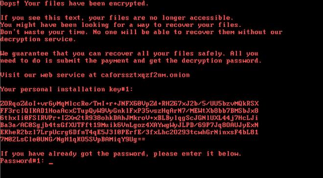Bad Rabbit: Novo ataque de ransomware volta a ameaçar a Europa